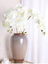 Home Decoration 5 Pcs Artificial Phalaenopsis Flowers -