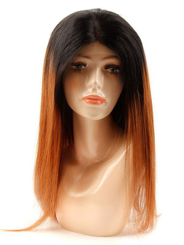 Unique Medium Human Hair Ombre Straight Lace Front Wig