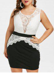Plus Size Lace Insert Two Tone Tight Dress -