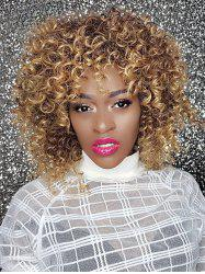 Long Shaggy Colormix Afro Kinky Curly Synthetic Wig -