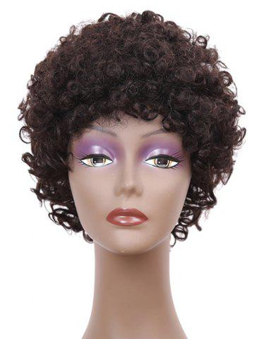 Jerry Curly Short Synthetic Wig