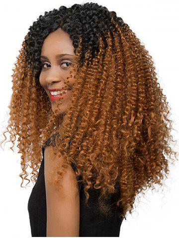 Gradient Jerry Curly Long Synthetic Wig
