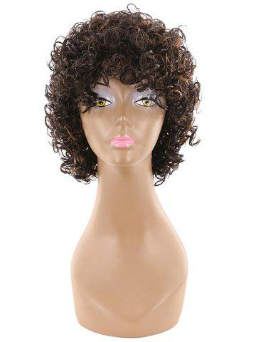 Short Side Bang Fluffy Afro Curly Human Hair Wig