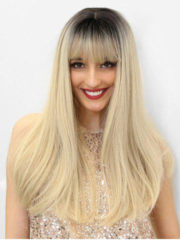 Ombre Synthetic Long See-through Bang Straight Wig