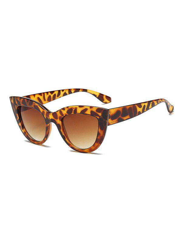 Chic Vintage Style Big Frame Outdoor Sunglasses