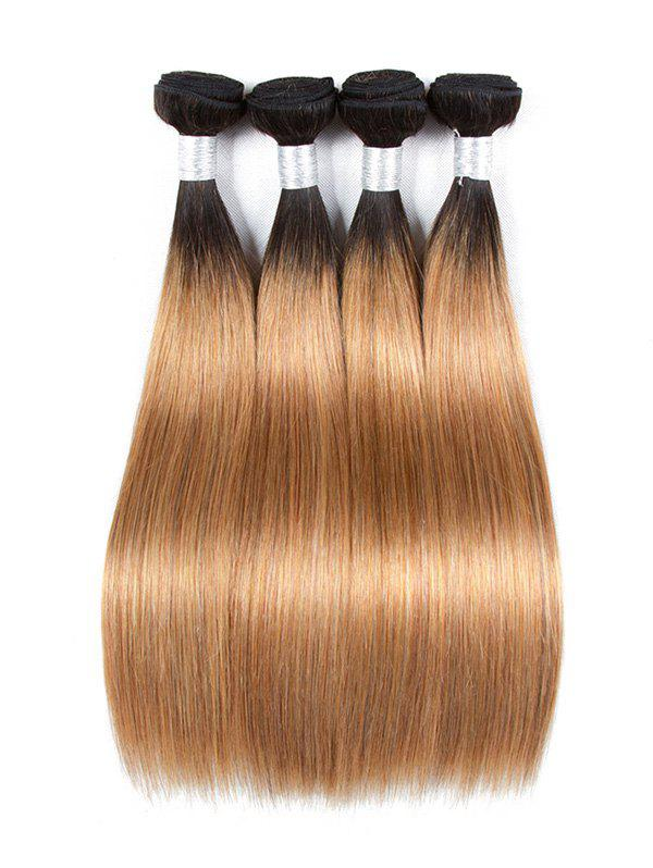 Chic Ombre Long Straight Human Hair Weft
