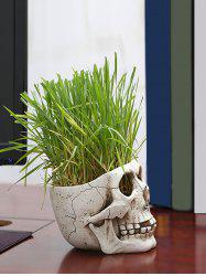 Skull Plant Potted Home Decoration -