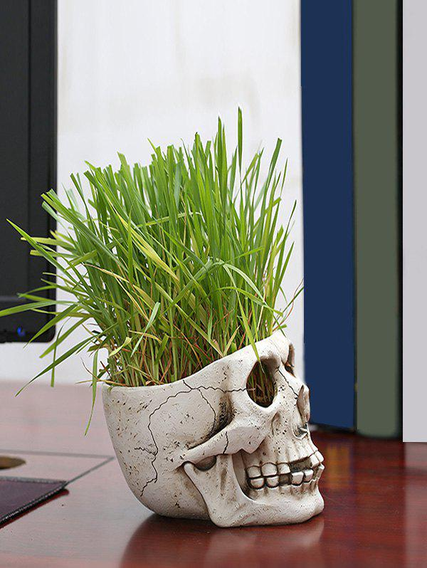 Store Skull Plant Potted Home Decoration