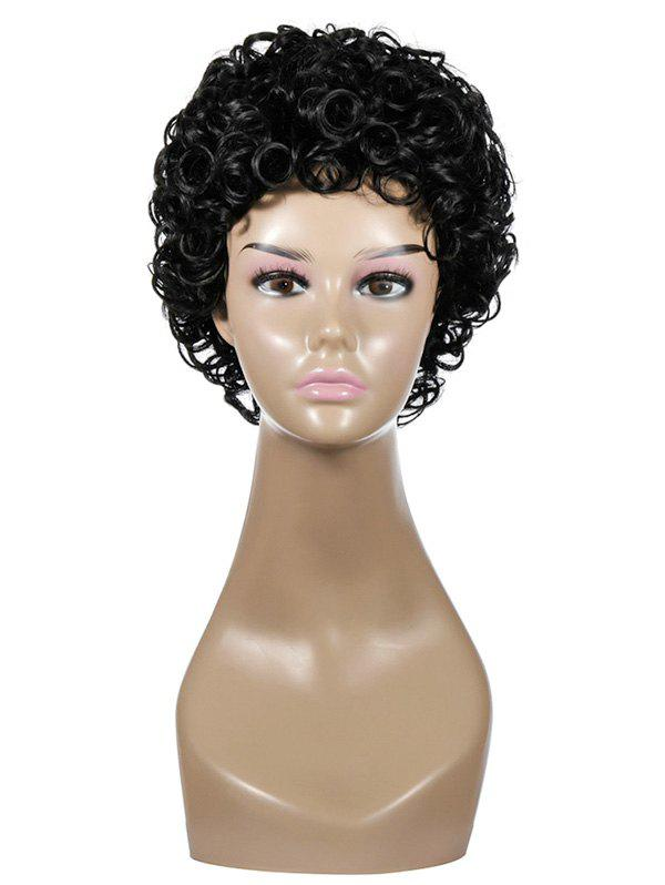New Short Curly Synthetic Wig