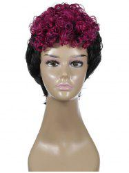 Two Tone Curly Short Synthetic Cosplay Wig -