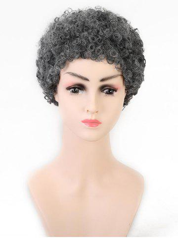 Afro Curl Short Synthetic Wig