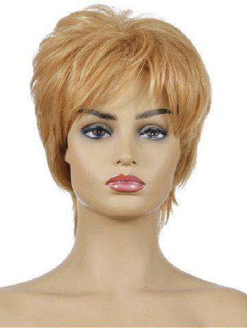 Synthetic Fluffy Short Straight Wig