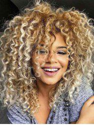 Afro Curl Synthetic Long Wig -