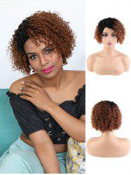 Human Hair Ombre Short Curly Side Part Wig -