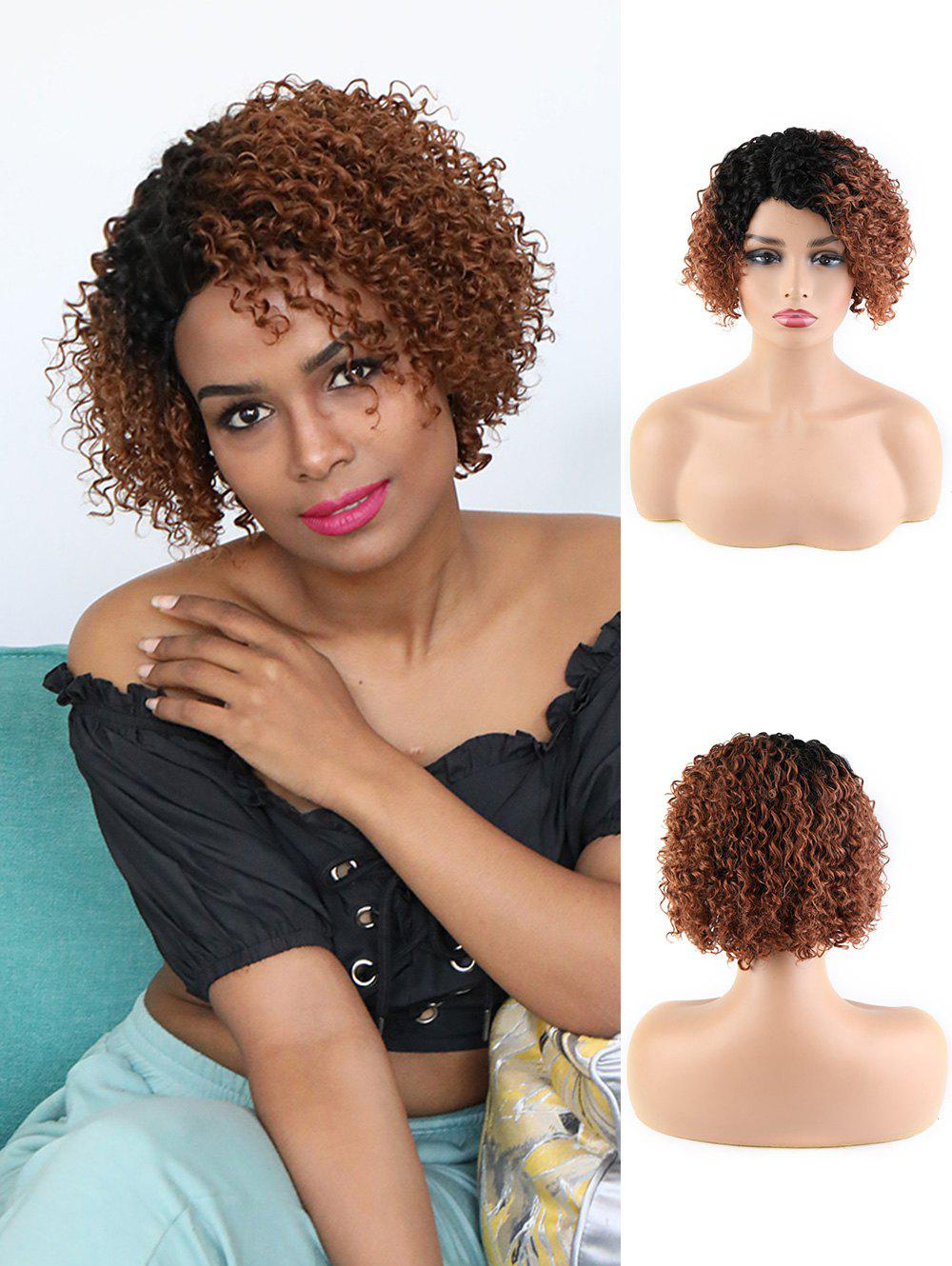 Unique Human Hair Ombre Short Curly Side Part Wig