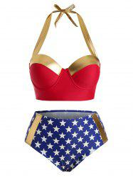 Plus Size American Flag Underwire Bikini Swimsuit -
