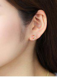 Golden Star Zircon Stud Earrings -