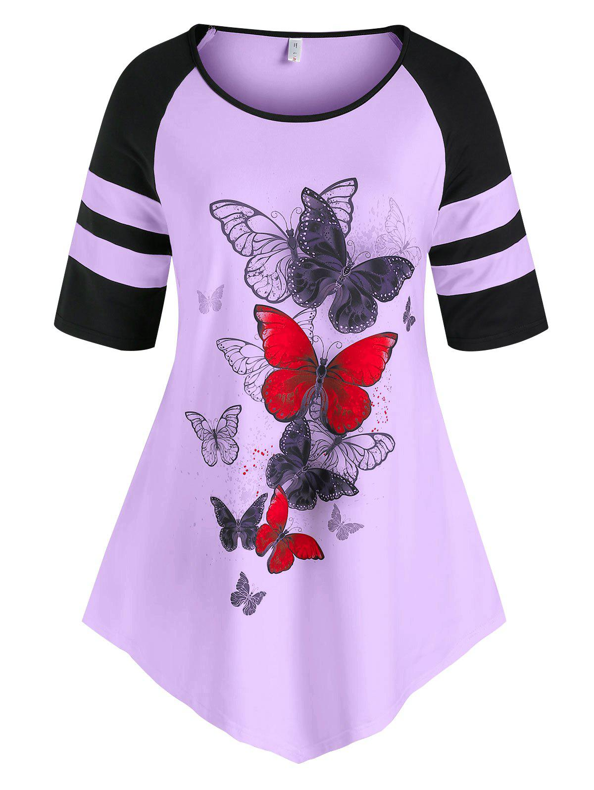 Outfits Plus Size Butterfly Contrast Binding Raglan Sleeve Tee