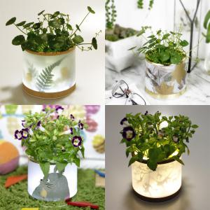 Multi-functional Retro LED Light Storage Box Decorative Planting Flower Pot Gadgets Container -
