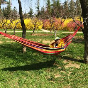 Durable Canvas Camping Hammock with 150KG Loading - RED