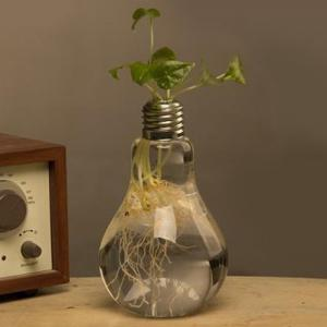 Creative Bulb Style Hanging Glass Vase Hydroponic Plants Flower Container -