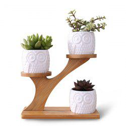 Creative Succulent Ceramic Plant Pots with Treetop Shelf -
