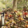 Portable Stainless Steel Watering Can Hairdressing Sprinkling Spot 280ml -