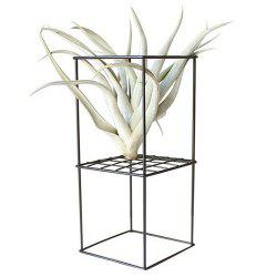 Nordic Style Iron Flower Stand for Air Plant -