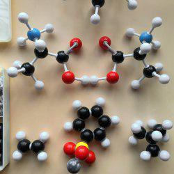 Molecular Model Set General Organic Chemistry Educational Toy -