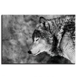 A Lonely Wolf Pattern Single Oil Painting Core -