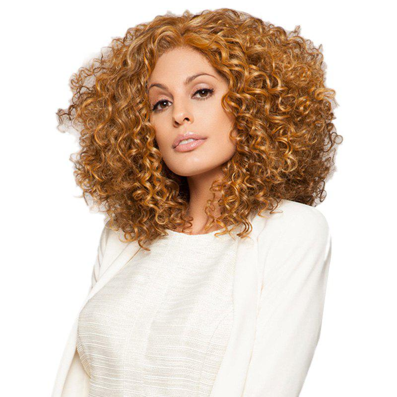 Store 6 - P5060 Europe And America Women Black African Small Volume Wig Foreign Trade Hot Rose Net Wig Headgear Model 4