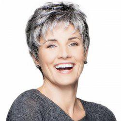 SYWT 213 Natural Mixed Color Ladies Short Curly Hair Wig -