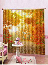 2PCS Maple Tree Printed Window Curtains -