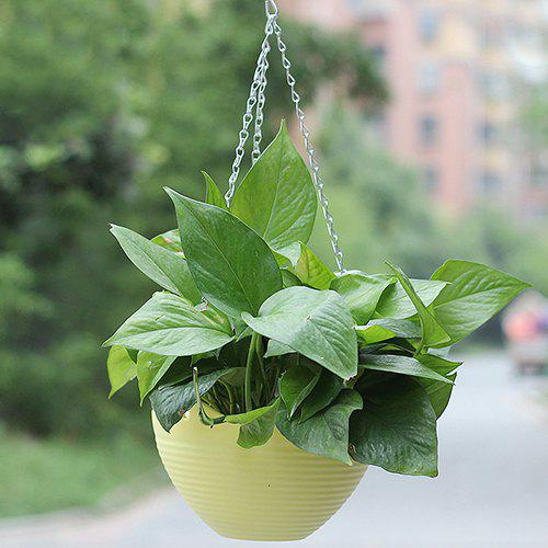 Unique Small Yellow Balcony Potted Resin Hanging Flowerpot