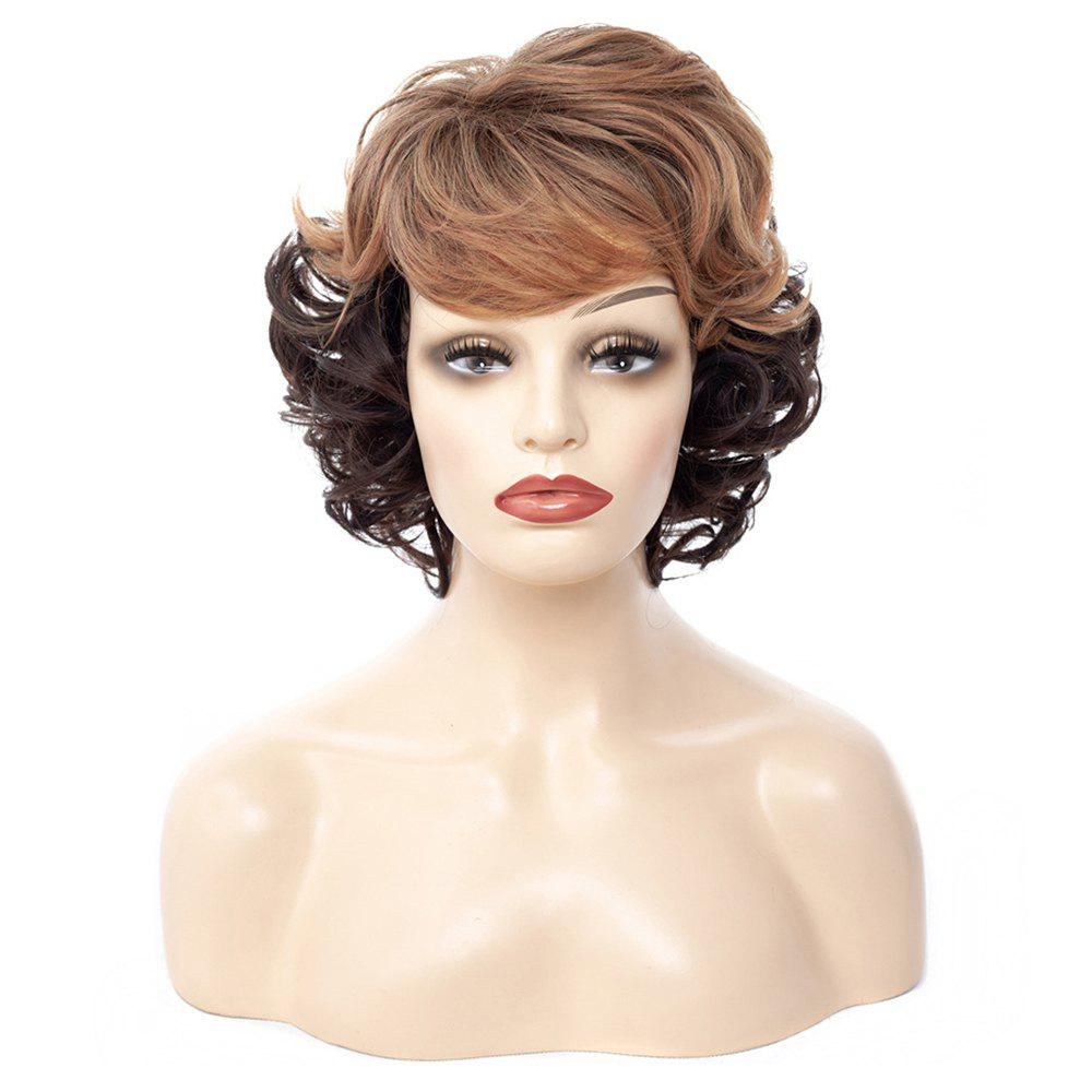 Affordable Female Naturally Realistic Two-color Gradient Small Roll Short Wig