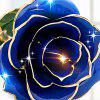 Valentine's Day Gift 24K Gold Plated Paint Rose -