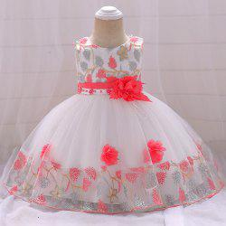 Baby Cute Flower Embroidery Princess Dress -