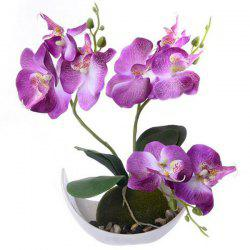 Trigeminal Phalaenopsis Simulation Artificial Plant Potted -
