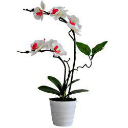 Creative Artificial Flower Phalaenopsis Plant Potted -