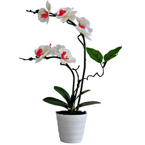 Outfits Creative Artificial Flower Phalaenopsis Plant Potted