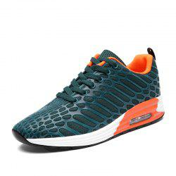 Creative Fashionable Ventilate Sports Shoes -