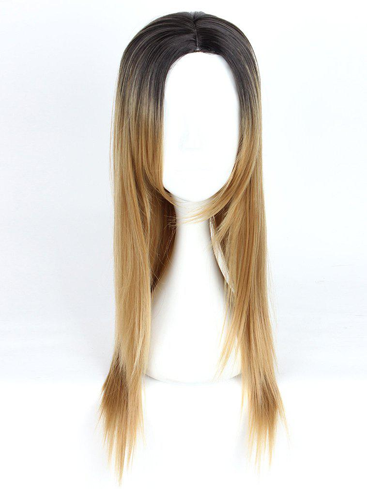 Shops Women's Fashion Long Straight Highlights Hair Wig Colorful Casual Party Wig