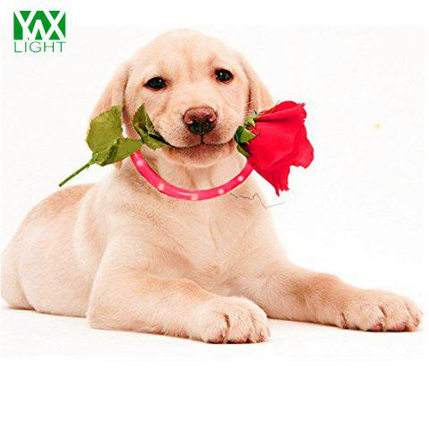 Latest YWXLight LED USB Rechargeable Luminous Dog Collar RED