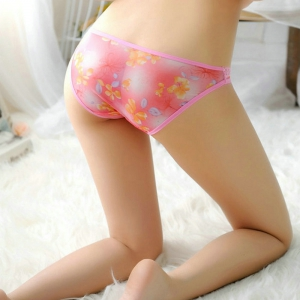 Womens Triangle Panties -