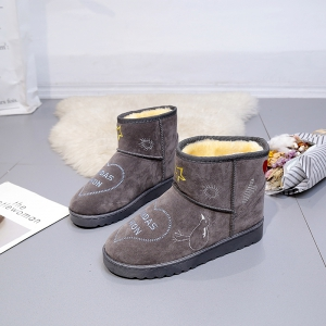 Autumn And Winter Snow Boots Female Boots Skid Shoes Shoes Boots Thick Warm -