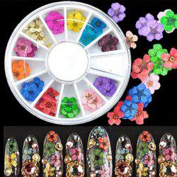 36PCS Natural Dried Flower Nail Art Decoration -
