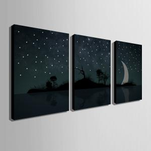 Stretched LED Canvas Print Art Crescent Flash Optical Fiber Print - 3pcs -