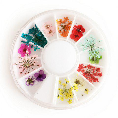 Hot 1 Box Mixed Style Natural Dried Flower Nail Art Decoration