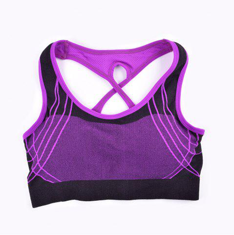 Latest 2017 Fashion Outdoor Running Sports Bra for Every Sexy Girls