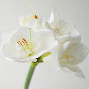 LmDec Modern Orchid Artificial Flower for Home Decoration -